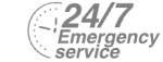 24/7 Emergency Service Pest Control in Leytonstone, E11. Call Now! 020 8166 9746
