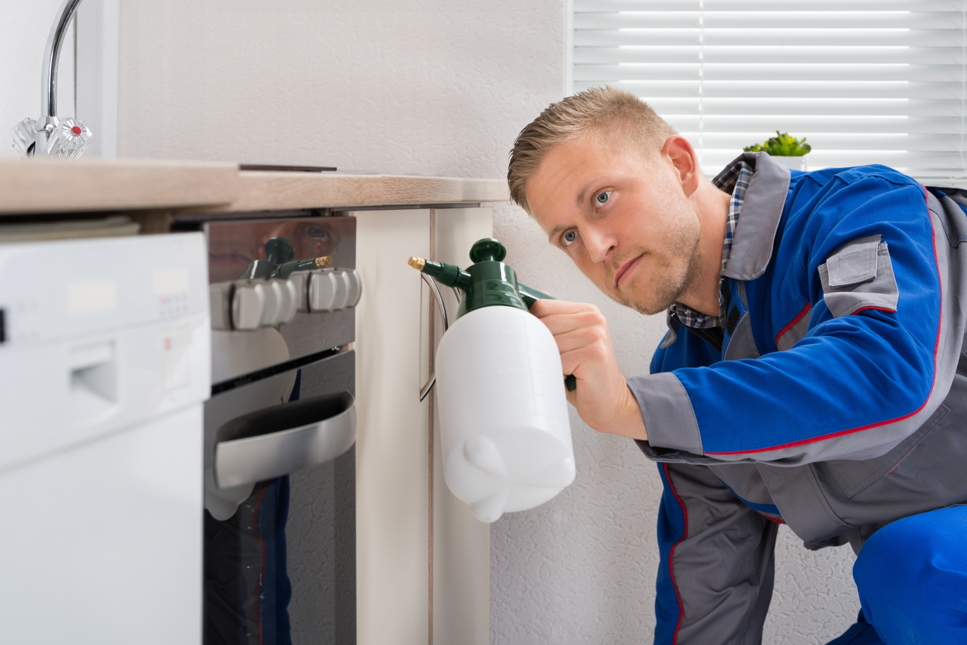 Pest Inspection, Pest Control in Leytonstone, E11. Call Now 020 8166 9746