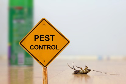 Pest Contol in Leytonstone, E11. Call Now 020 8166 9746